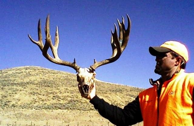 3-coes-buck